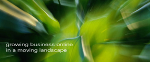 growing business online in a moving landscape